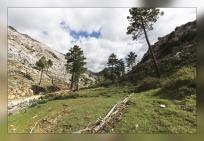 Cañada del EnebroI